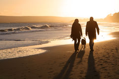 Silhouettes on the Sand. Silhouetted couple walking a dog on the beach Stock Photography