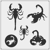 Silhouettes of a scorpion. Scorpions emblems and icons. Print design for t-shirt. Tattoo design. Vector royalty free illustration