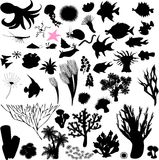 Silhouettes of sea animal Stock Photo