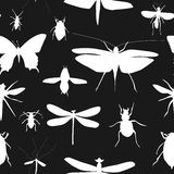 Silhouettes Set of Beetles, Dragonflies and Butterflies Seamless Royalty Free Stock Image