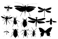 Silhouettes Set of Beetles, Dragonflies and Butterflies Royalty Free Stock Photos
