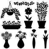 Silhouettes set of flowers in pots and vases Royalty Free Stock Images