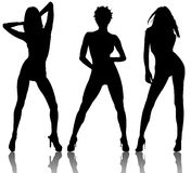Silhouettes of sexy females Stock Images