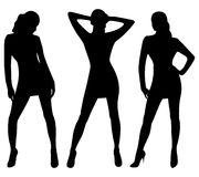 Silhouettes of sexy women Stock Image