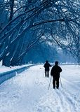 Silhouettes of skiers in a snowfall. Silhouette of family on skis on walk on coast of the river Stock Photo