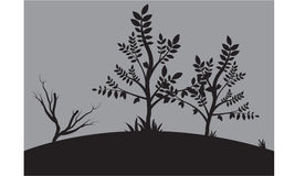 Silhouettes of small tree. In fields Royalty Free Stock Photo