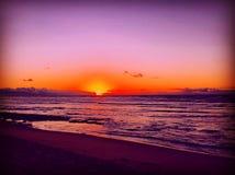 silhouettes solnedgång Fotografering för Bildbyråer