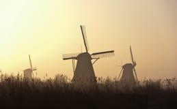 silhouettes soluppgång Royaltyfri Fotografi