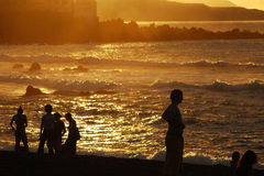 Silhouettes at sunset. At Puerto Cruz, Tenerife. High contrast and back-lighting Stock Images