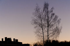 Silhouettes at sunset. Silhouettes of the house under construction and two trees at sunset Royalty Free Stock Photography