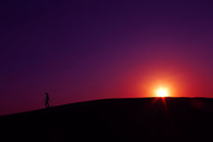 silhouettes  sunset at Jaisalmer  thar desert India Royalty Free Stock Image