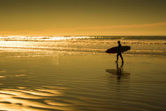 Silhouettes of surfer in sunset Royalty Free Stock Photography