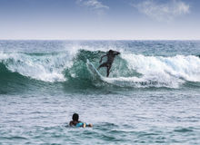 Silhouettes of a surfers. Royalty Free Stock Photography