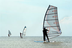 Silhouettes of a three windsurfers Stock Image
