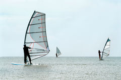 Silhouettes of a three windsurfers Royalty Free Stock Photo