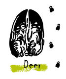 Silhouettes of traces of wild animals. Traces of a deer. Vector illustration Stock Photos