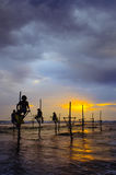 Silhouettes of the traditional Sri Lanka`s fishermens Royalty Free Stock Photography