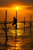 Silhouettes of the traditional Sri Lanka`s fishermens Royalty Free Stock Photo