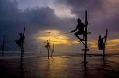Silhouettes of the traditional Sri Lankan stilt fishermen Royalty Free Stock Photography
