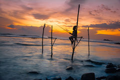 Silhouettes of the traditional Sri Lankan stilt fishermen. At the sunset in Weligama, Sri Lanka. Stilt fishing is a method of fishing unique to the island Stock Photos