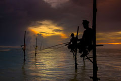 Silhouettes of the traditional Sri Lankan stilt fishermen Royalty Free Stock Image