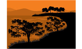Silhouettes of tree on the lake Stock Image