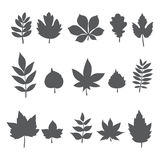 Silhouettes of tree leaves. Autumn leaf collection Stock Image