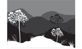 Silhouettes of tree in mountain. Silhouettes of tree on the mountain Stock Photos