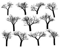Silhouettes of trees Stock Images