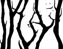 Silhouettes of trees. Stock Photo