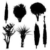 Silhouettes of trees and bushes. Silhouettes of different kind of trees and bushes Royalty Free Stock Photography