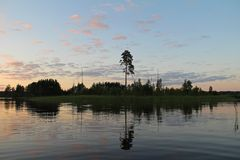 Silhouettes of trees and colorful sky are reflected in the forest lake in the evening. Unusual and picturesque scene. Russia. Silhouettes of trees and colorful stock photo