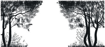 Silhouettes of trees Royalty Free Stock Photography