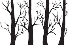Silhouettes of trees Royalty Free Stock Image