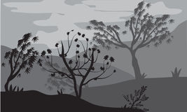 Silhouettes of trees by storms Royalty Free Stock Image