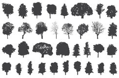 Silhouettes of trees vector set Stock Photography