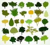 Silhouettes of trees. Vector set Royalty Free Stock Photos