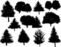 silhouettes treevektorn Arkivfoto