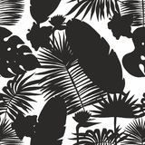Silhouettes of tropical leaves. Vector Seamless Pattern Royalty Free Stock Photos