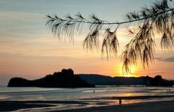 Silhouettes tropicales de coucher du soleil photographie stock libre de droits