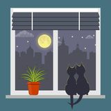 Silhouettes of two cats sitting on a windowsill under the light of the moon. Night city outside the window. Blinds on window and r. Oom plant in pot on the Stock Image