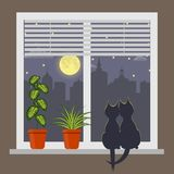 Silhouettes of two cats sitting on a windowsill under the light of the moon. Night city outside the window. Blinds on window and r. Oom plant in pot on the Stock Photography