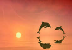 Silhouettes of two dolphins jumping. Orange sunset  background with silhouettes of two dolphins Royalty Free Stock Images