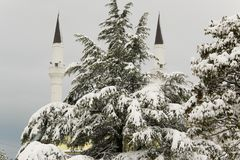 Silhouettes of the two minarets of the mosque hidden by the pine covered with snow. Albania Royalty Free Stock Photos