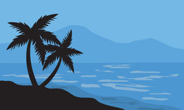 Silhouettes of two palm in beach Stock Image