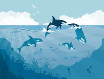 Silhouettes of Underwater wildlife, killer whales. Jellyfish, fish on a sea background, vector illustration Stock Photos