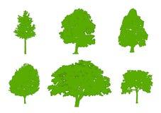 Silhouettes vertes chêne, peuplier, érable rouge, érable à sucre, chêne, bouleau d'arbre Conception plate, illustration de vecteu Photographie stock