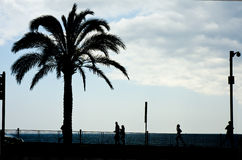 Silhouettes of walkers and runners. On the promenade Royalty Free Stock Images