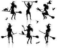 Silhouettes of a witch. Stock Images