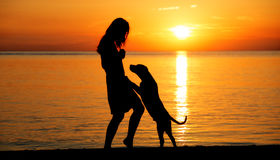 Silhouettes of a woman and dog at the beach. Woman and her dog on the beach at sunset Stock Photography